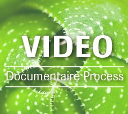 PhytoQuant Video